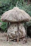 Zbożowa składowa buda w tradycyjnej Kenijskiej wiosce Zdjęcie Stock
