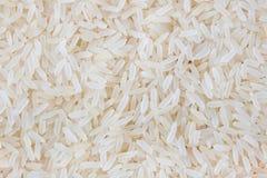 Zbożowi ryż obrazy royalty free