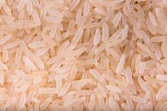 Zbożowi ryż Zdjęcie Stock