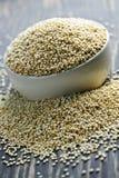 zbożowy zbliżenia quinoa obrazy royalty free