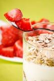 zboże jogurt Obraz Royalty Free