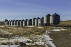 Zbożowi silosy w Alberta Zdjęcie Stock