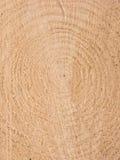 zbożowy drewno Obrazy Royalty Free