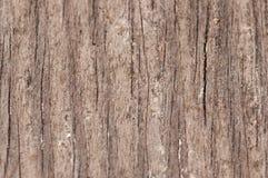 zbożowy drewno Zdjęcia Stock