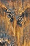 zbożowy drewno Obrazy Stock
