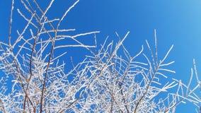 zbocze góry frosty Obraz Royalty Free
