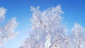 zbocze góry frosty Zdjęcia Royalty Free