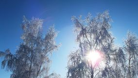 zbocze góry frosty Fotografia Stock