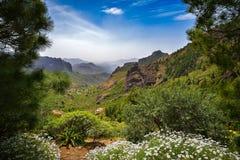 Zbocze góry krajobraz na Granu Canaria wyspie, Hiszpania Zdjęcia Royalty Free
