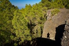 Zbocze góry krajobraz w Tamadaba naturalnym parku na Granu Canaria wyspie, Hiszpania Zdjęcie Royalty Free