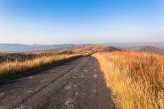 Zbocze trawy koloru Afrykański teren  Zdjęcia Stock
