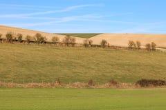 Zbocze w Sussex Zdjęcie Stock