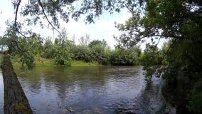 Zbruch river Podilski, Tovtry Khmelnytskyi Ukraine stock video
