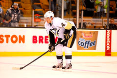 Zbynek Michalek Pittsburgh Penguins Royalty Free Stock Images