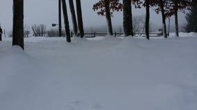zbyt dużo śniegu Obrazy Stock