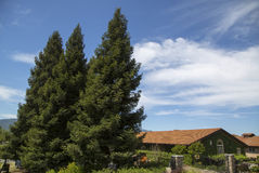 ZD Winery in Napa Valley Stock Images