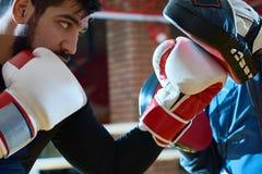 Zdecydowany bokser uderza pięścią trenujący ochraniacza zdjęcie royalty free