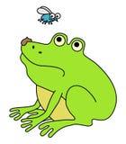 zdegustowana żaba Zdjęcia Stock