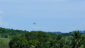 Zdejmował samolot nad tropikalnym lasem zbiory