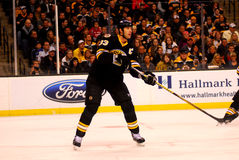 Zdeno Chara Boston Bruins Royalty Free Stock Image