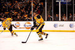 Zdeno Chara Boston Bruins Stock Photography