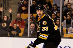 Zdeno Chara Boston Bruins Stock Photo