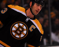 Zdeno Chara, Boston Bruins Royalty Free Stock Photo