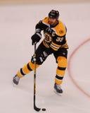 Zdeno Chara, Boston Bruins Stock Photography