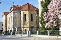 Zdewastowana żydowska synagoga w świetle słonecznym w wiośnie Tylny widok od ulicy fotografia stock