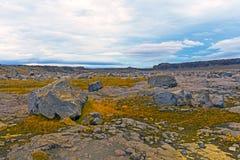 Zdewastowane Powulkaniczne równiny w Północnym Iceland fotografia royalty free