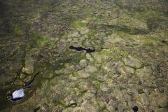 zdjęcie powietrznej tło Zdjęcia Royalty Free