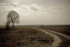 zdjęcie rocznego krajobrazu Fotografia Stock