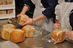 Zdobyć chleb Obrazy Stock