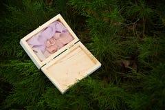 zdojest piękną pudełka zakończenia dof tkaninę dostawać odosobnienie kłaść pierścionki spłyca miękką część w górę ślubu który bie Zdjęcia Stock
