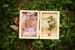 zdojest piękną pudełka zakończenia dof tkaninę dostawać odosobnienie kłaść pierścionki spłyca miękką część w górę ślubu który bie Fotografia Stock