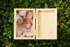 zdojest piękną pudełka zakończenia dof tkaninę dostawać odosobnienie kłaść pierścionki spłyca miękką część w górę ślubu który bie Zdjęcie Royalty Free