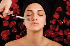 Zdrój gałęzatki maska Fotografia Stock