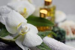 Zdrój orchidei zieleni ręcznik Zdjęcia Stock