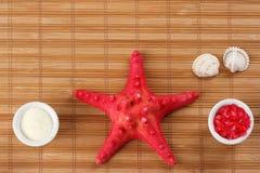 Zdrój sól Fotografia Stock