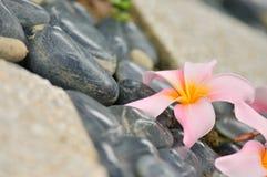 Zdrój Zen zdjęcia stock
