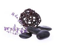 Zdrojów kamienie lawendowy kwiat i gmatwanina wierzba, Fotografia Stock