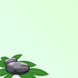 Zdrojów liści kamienny tło Zdjęcie Stock
