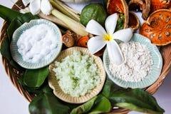 Zdrojów składniki z ziele Zdjęcie Royalty Free