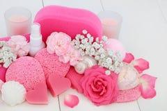 Zdroju i łazienki piękna produkty Obraz Royalty Free