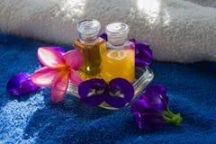 Zdroju kwiat i olej Zdjęcie Royalty Free