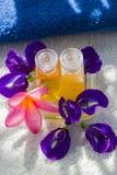 Zdroju kwiat i olej Obraz Stock