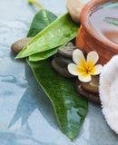Zdroju kwiat, kamienie i ziołowy puchar dla masażu traktowania, obrazy stock