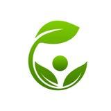 Zdroju liścia ikona zdjęcia stock