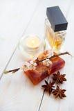 Zdroju położenie z ręcznika aromata oleju bottl Fotografia Stock