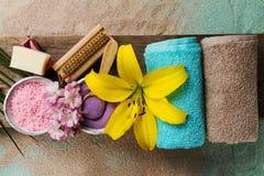 Zdroju pojęcie Odgórny widok piękni zdrojów produkty z miejscem dla t Zdjęcia Royalty Free